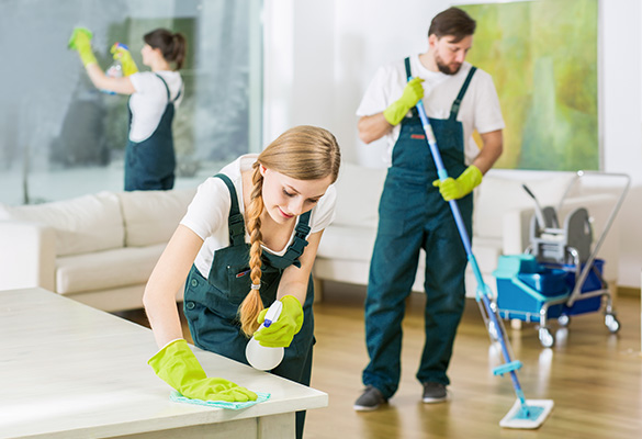 Facility Management & Floor Cleaning